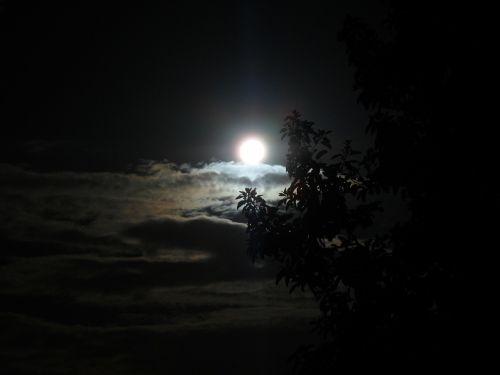 moon brightness night