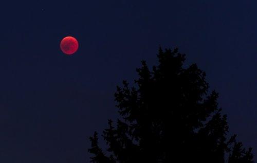 moon  night  lunar eclipse