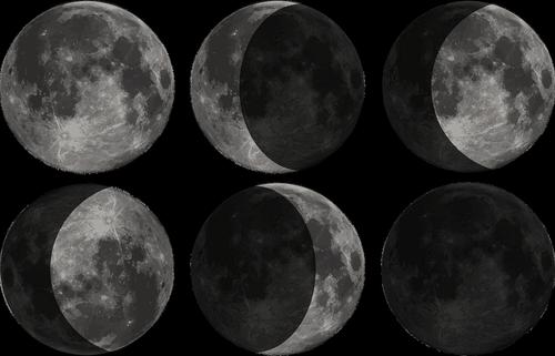 moon  phase  zodiac