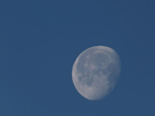 moon daytime moon january moon