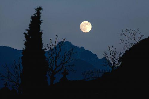 moon full moon moon night
