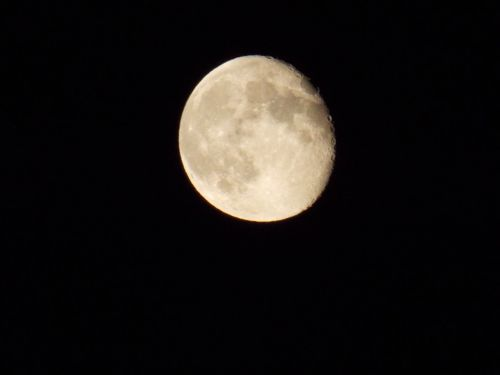 moon craters on the moon man in the moon
