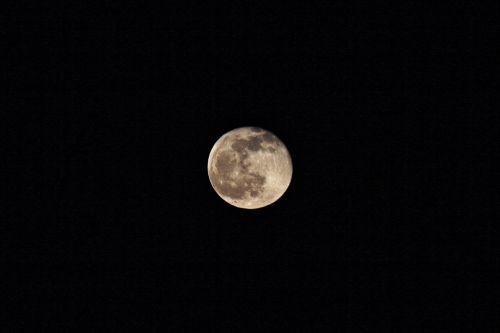 moonlight moon full moon