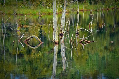 moor mirroring water