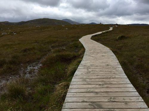 moor away nature reserve