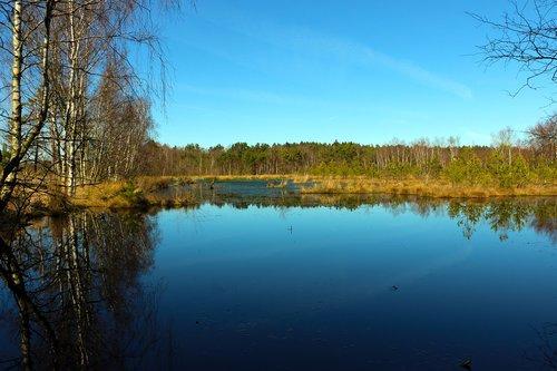 moor  landscape  nature reserve