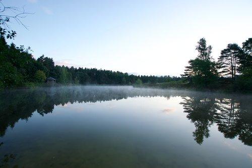 moor  heide  fog