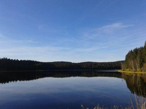 moor pond moor autumn