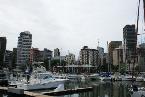 Moored Yachts And City Buildings