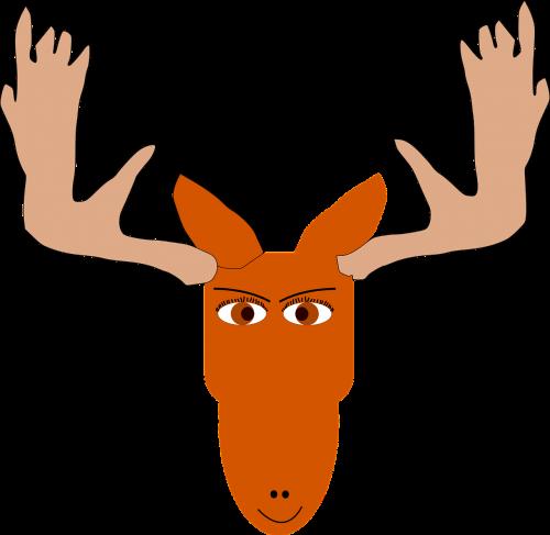 moose head antlers