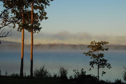 morgenstimmung lake fog