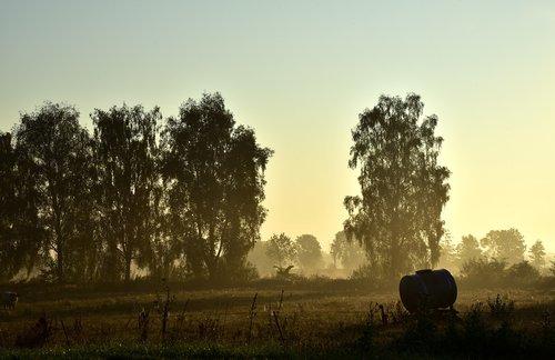 morgenstimmung  landscape  nature