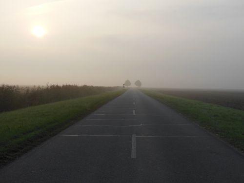 morning fog march