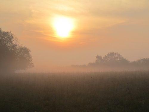 morning sun dawn