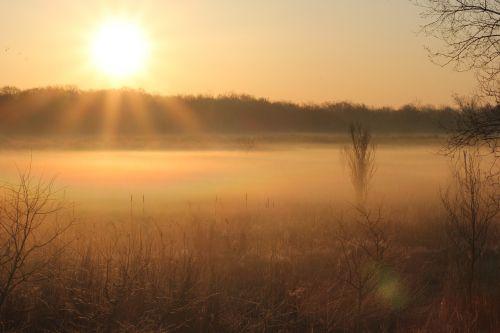 morning fog sun sunrise