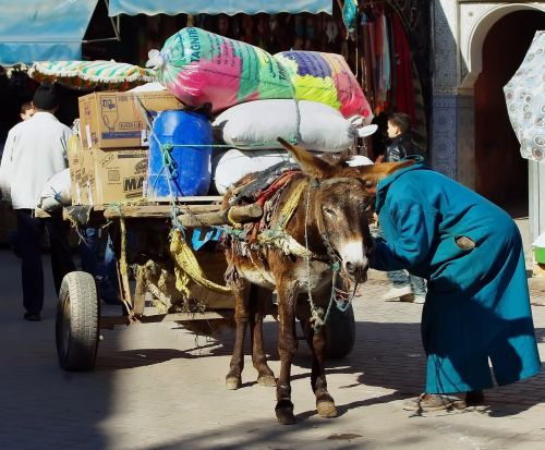 morocco marrakech hitch