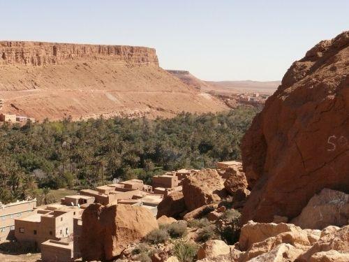 morocco desert oasis
