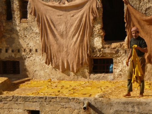 morocco skins the tannery