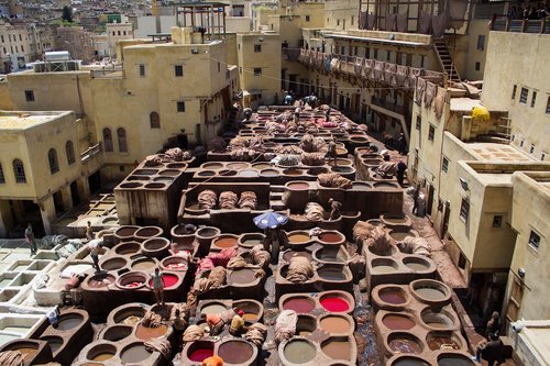 morocco  the tannery  skin