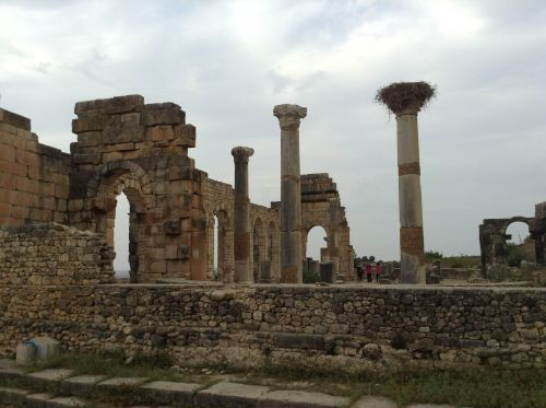 morocco volubilis roman