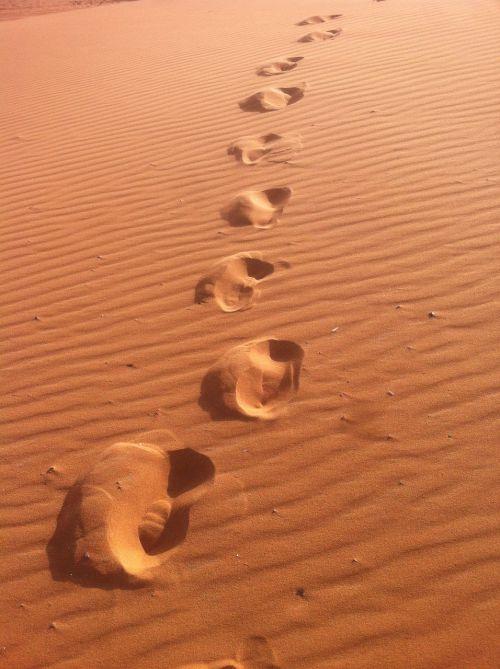 Marokas,keliauti,kelionė,afrika,dykuma,kupranugaris,takelius,ekskursija,pasaulio keliones,pasaulis,turizmas,žemynas,kelionė,nuotykis,žemėlapis,žemė,kelionė,atostogos,kupranugarys,kelionė,trasa,kelionė,kelionė,kraštovaizdis,karštas