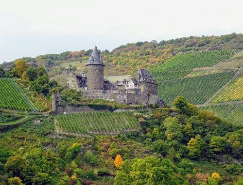 mosel castle vineyards