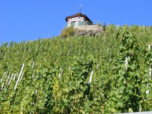 moselle river germany wine