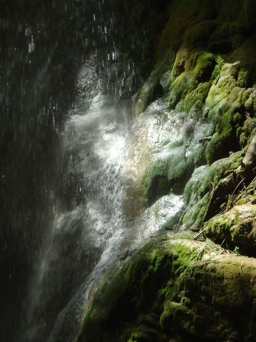 moss waterfall wet