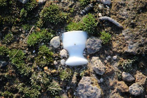 moss insulator ceramic