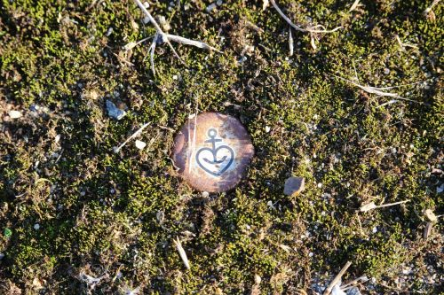 moss bottle caps old