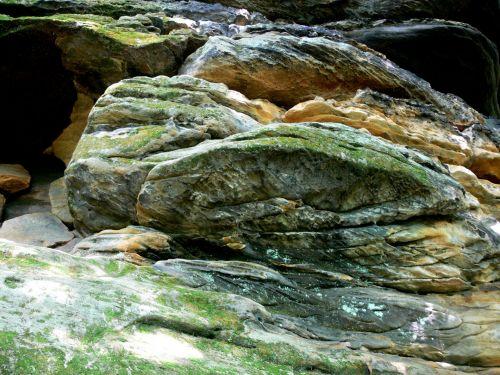 Moss And Lichen On Rocks
