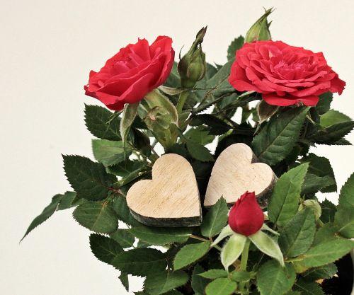 mother's day heart gratitude