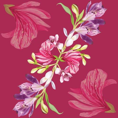 motif design  textile design  fabrics design