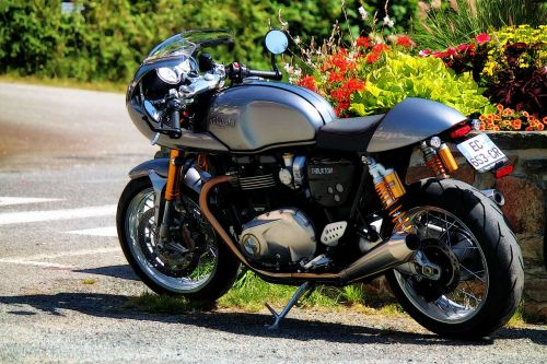 motorcycle triumph thruxton british