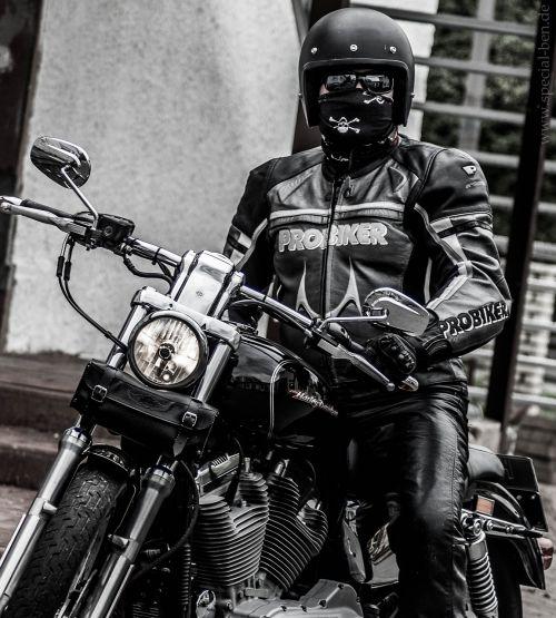 motorcycle harley davidson harley