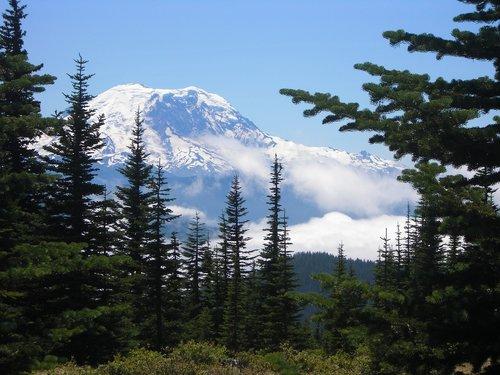 mount rainier  mountain  rainier