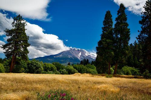 mount shasta california mountain