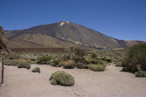 kalno teide,Tenerifė,kalnas,vulkanas,teide,kanarietis