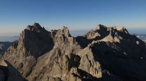 mountain picos de europa treasurer
