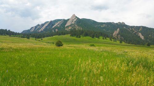 mountain,nature,grass,landscape,nature landscape,hiking,sky,mountain top,rock,peak,summer,outdoor,mountain landscape,beautiful landscape,trail,natural beauty,trees