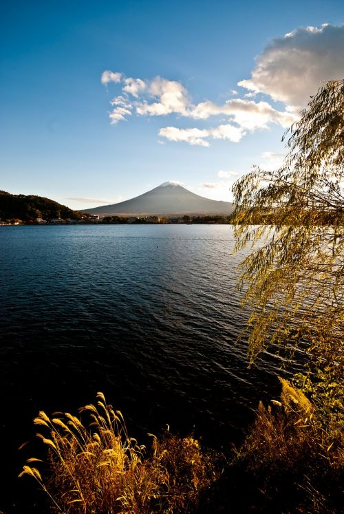 mountain fuji lake