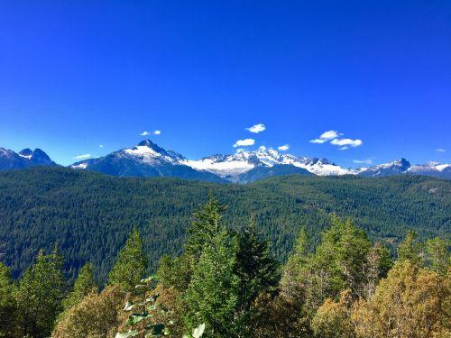 mountain forest wilderness
