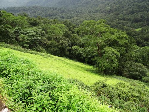 mountain india western ghats