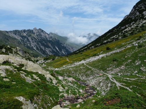 mountain alpine maritime alps