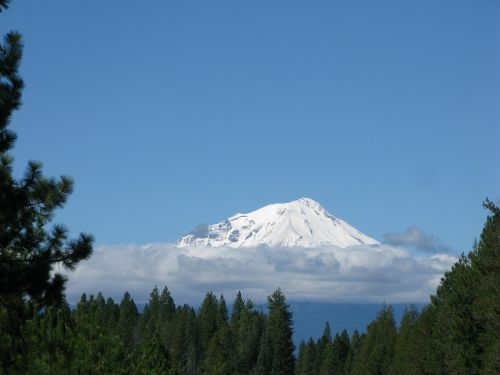 mountain shasta california