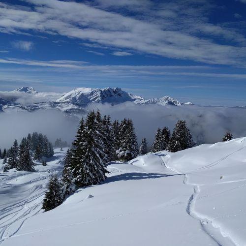 kalnas,žiema,sniegas,šaltas,vaizdingas,slidinėjimas,Alpių,Alpės