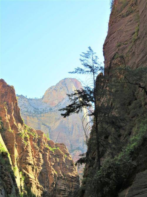 kalnas,dramatiškas,kraštovaizdis,Utah,vaizdingas
