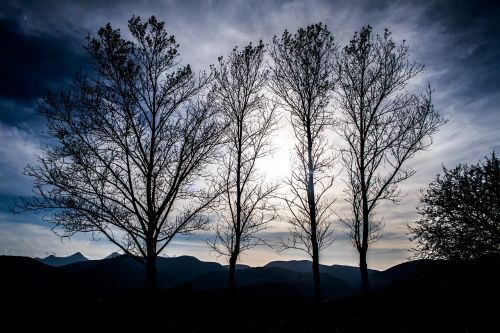 mountain,highland,tree,plant,nature,landscape,dark,cloud,sky