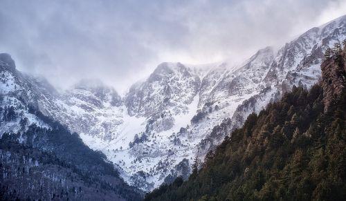 mountain snow trees