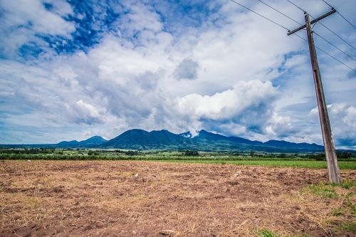 mountain sugarcane negros island